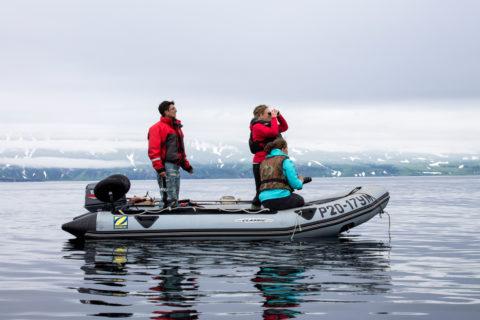 Косатки: на встречу с морскими богами айнов