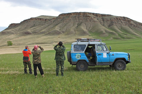 С птицей по жизни: будни орнитолога в Хакасии
