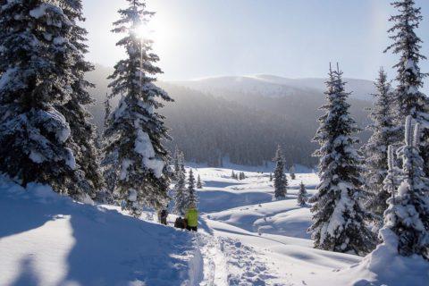 Зачем ехать в Сибирь зимой?