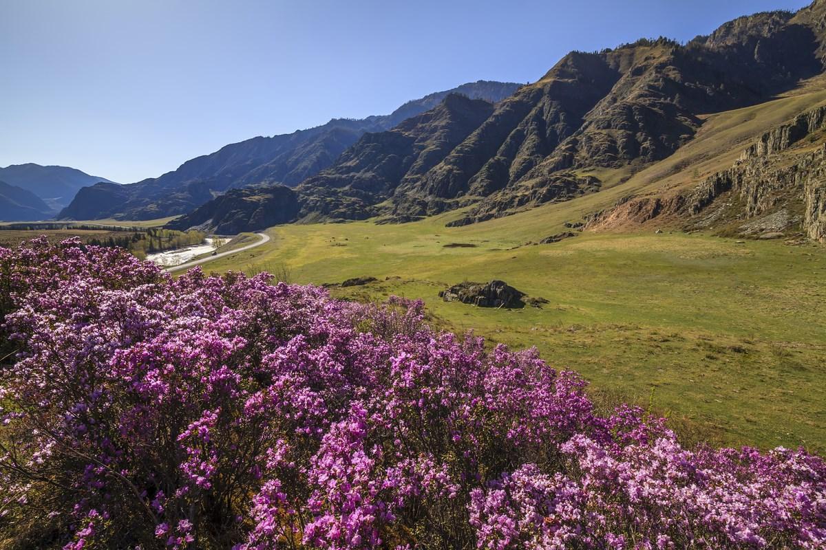 Алтай на майские праздники: из зимы в лето и обратно